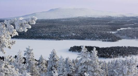 Arktista vimmaa – elokuva- ja mediafestivaali