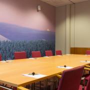 meeting-room-pallas2