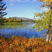 autumn-colours-yllas1