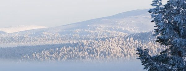 Ääritunnelmien kautta Jouluun, Rovaniemi